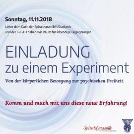 Rückblick Spiraldynamik® Akademie Kongress und I•GTH Workshoptag 10./11. Nov. 2018